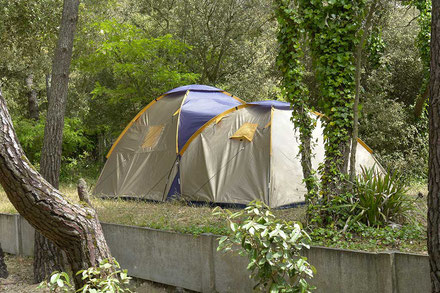 image3 emplacements camping les pins oleron